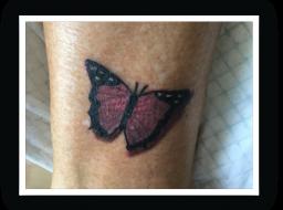 Vlinder-enkel-groot
